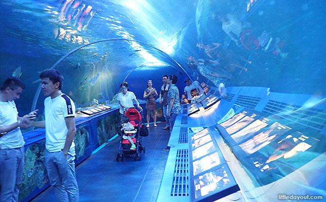 Tunnel Water Tank