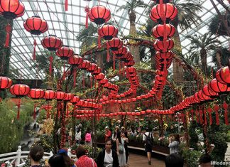 What To Do During The Lunar New Year 2019 In Singapore