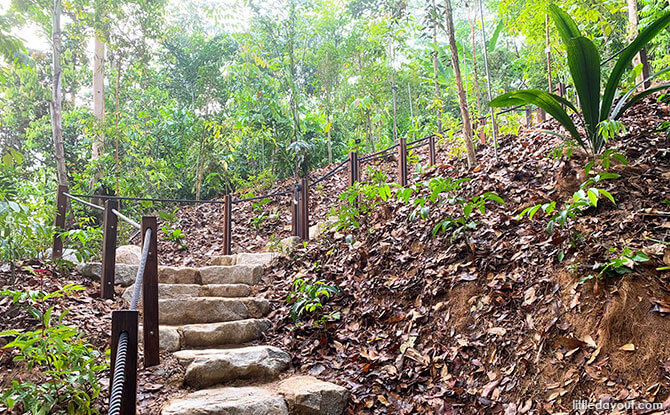 Stairs at the Mingxin Foundation Rambler's Ridge