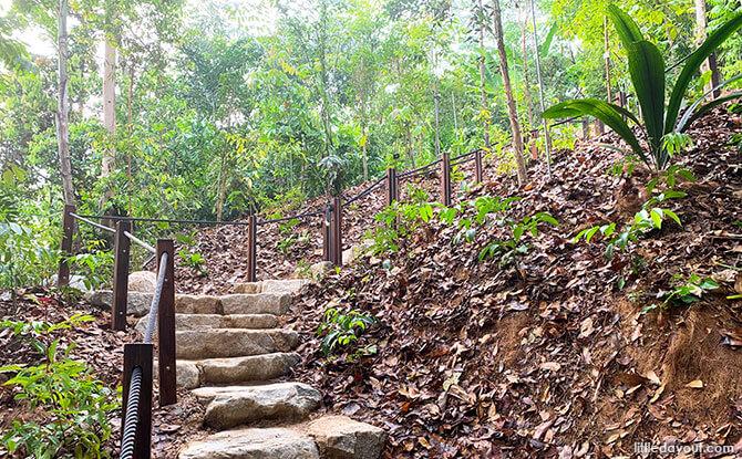 Stairs at the Mingxin Foundation Rambler's Ridge