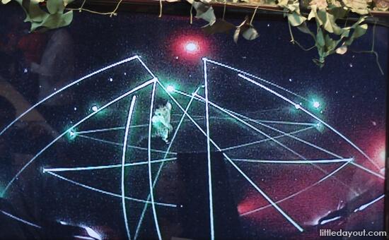 Anergy Laser Shootout!
