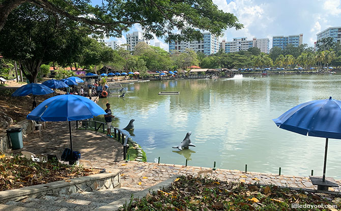 Fishing Ponds in Pasir Ris