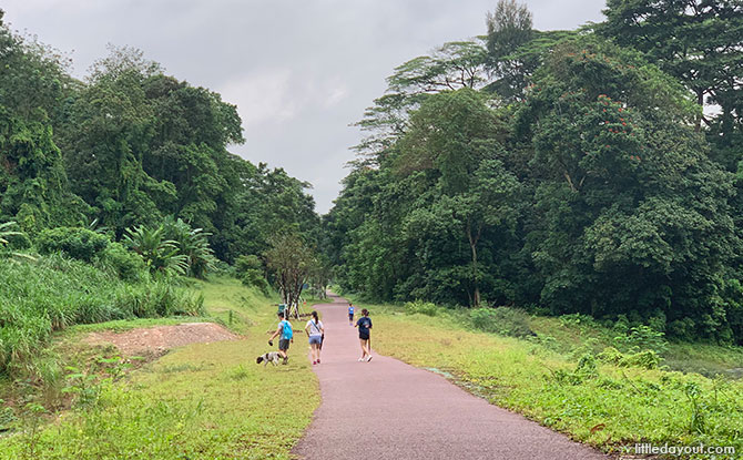 Walking The Rail Corridor: Exploring The Clementi Forest & Old Bukit Timah Railway Station