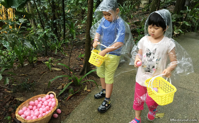 Collecting eggs at the Easter egg Hunt 2019 at Jurong Bird Park