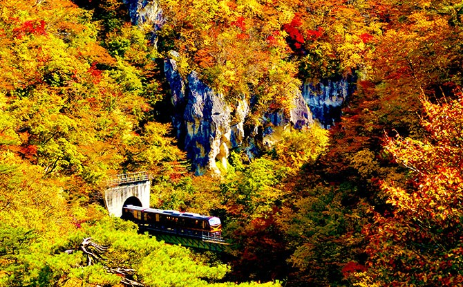 Naruko Gorge (Resort Minori, Rikuu East Line train in Miyagi Prefacture) (Autumn)