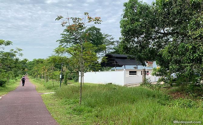 Along the Green Corridor South