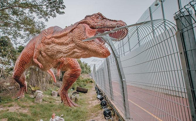 T-Rex at Jurassic Mile, Dinosaur Walk at Changi Airport