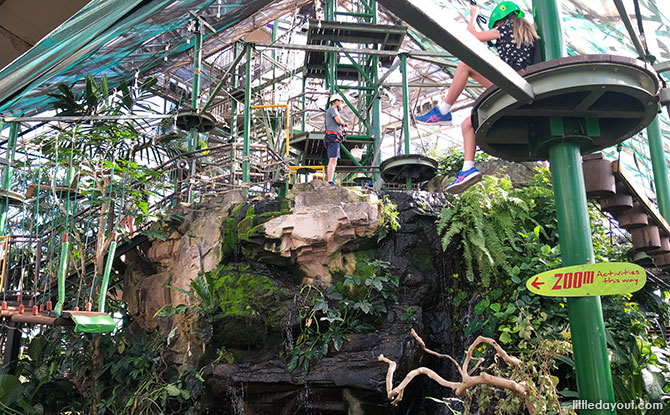 The Cairns ZOOM & Wildlife Dome is located in Cairns, Australia