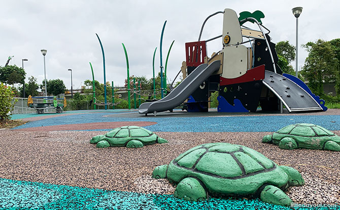 Turtles at Canberra