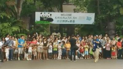 Crowds At Zoo