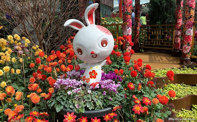 Rabbit Zodiac Animal - Chinese New Year 2020