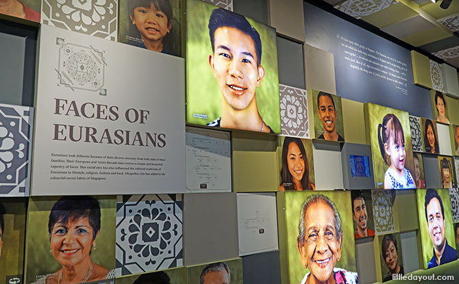 Faces of the Eurasians
