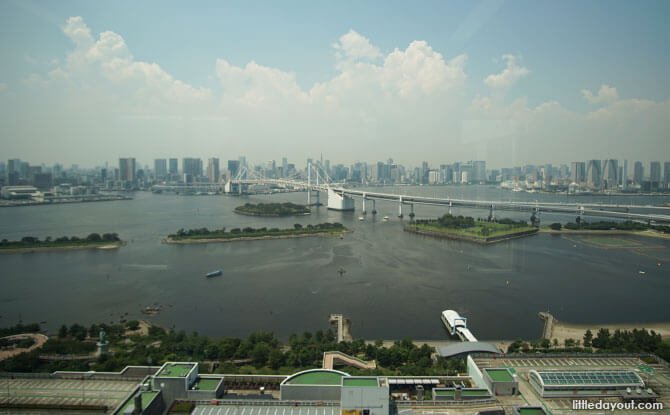 View from the Fuji TV Building Observation Deck