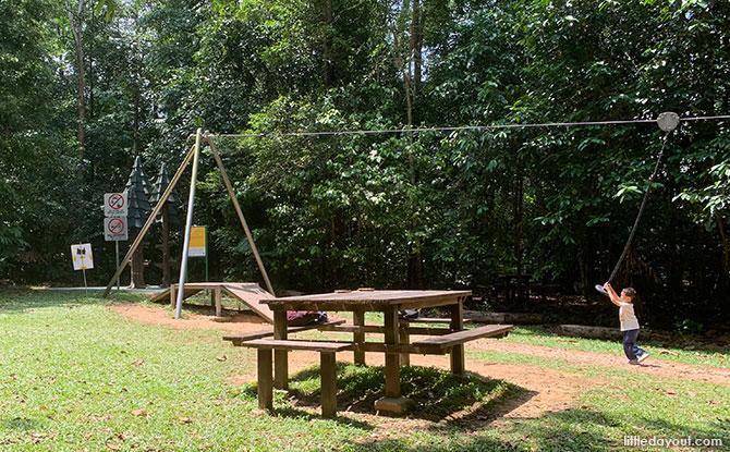 Zipline at Hindhede Nature Park