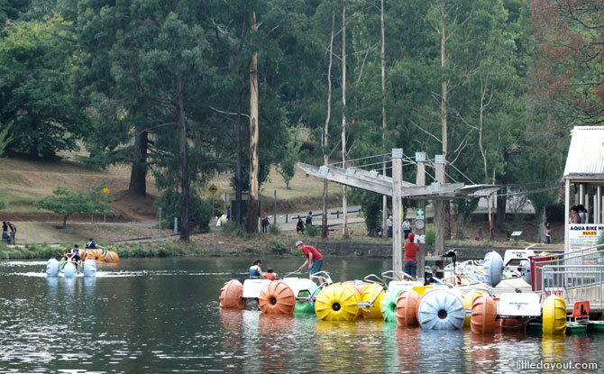 Aqua bikes at Lakeside, Dandenongs