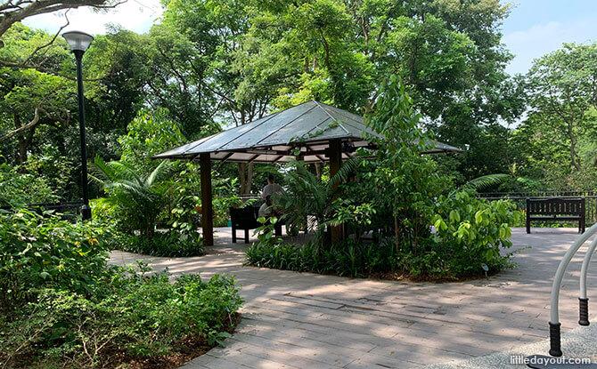 Telok Blangah Hill Park Therapeutic Garden