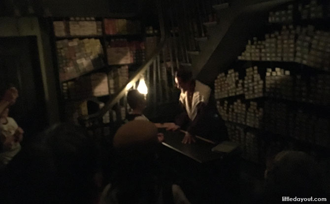 Ollivanders Wand Selection Experience