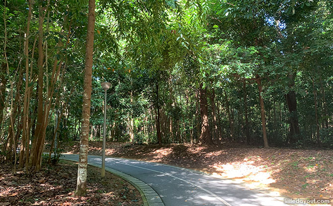 Yishun Park Plantation Past