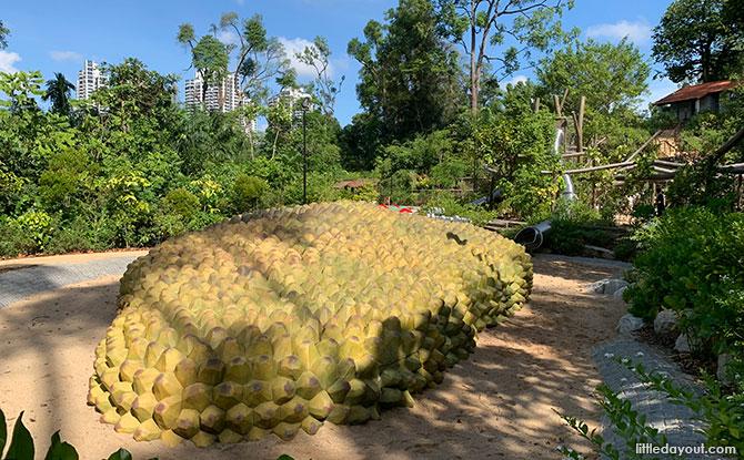 giant cempedak fruit