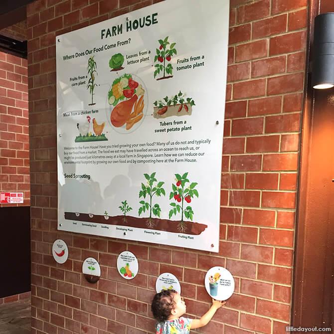 Farmhouse at Jacob Ballas Children's Garden New Extension