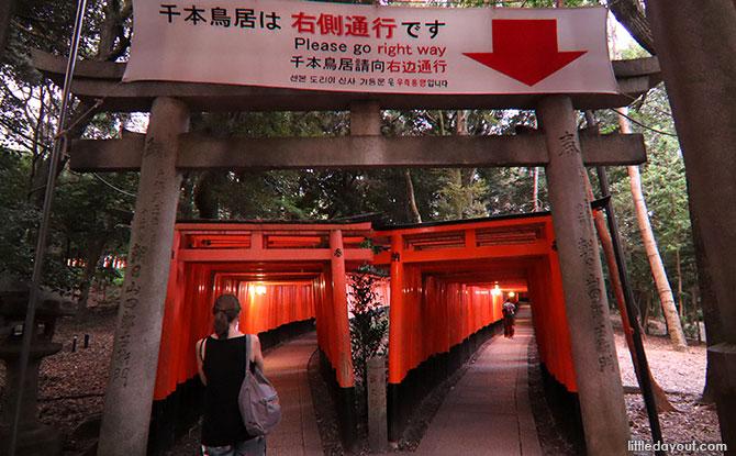 Senbon Torri at Fushimi Inari Shrine