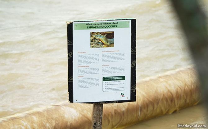 Beware of crocodile!
