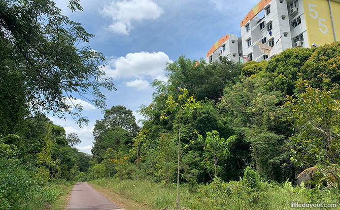 walk from Tanglin Halt to Wessex Estate