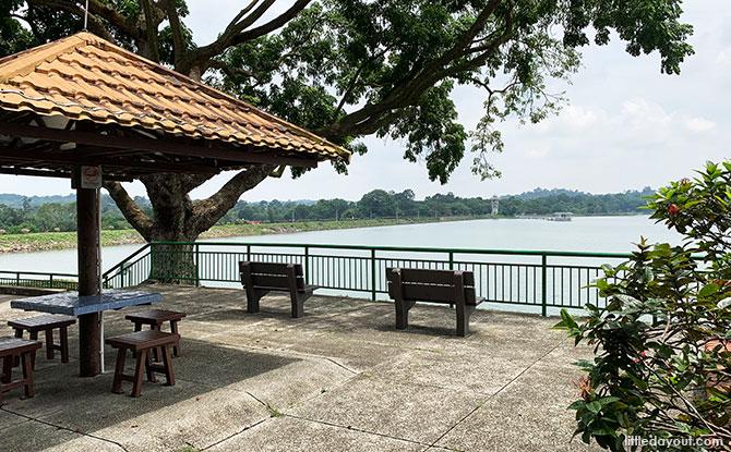 View of Upper Seletar Reservoir from the bus stop at Mandai Road