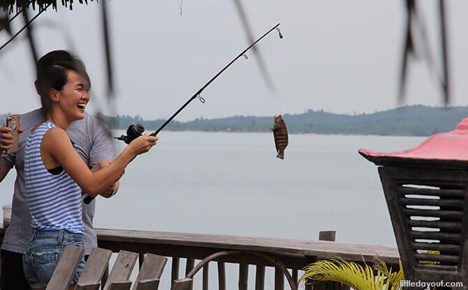 Blue Mountain Kelong Fishing Catch