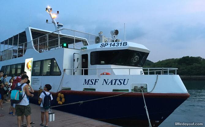 MSF Natsu
