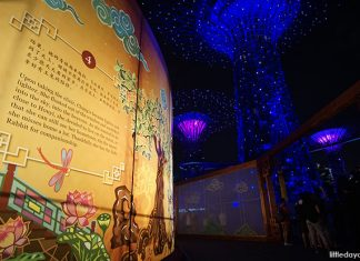 Gardens by the Bay's Mid-Autumn Festival 2019: Step Inside A Lantern And Bask In A Display Of Lights
