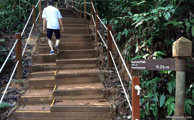 11-Summit-Path