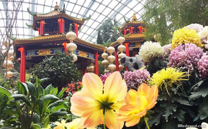 Dahlia Dreams at Gardens by the Bay 2019: Wandering Through A Chinese Garden