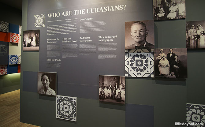 Who are the Eurasians