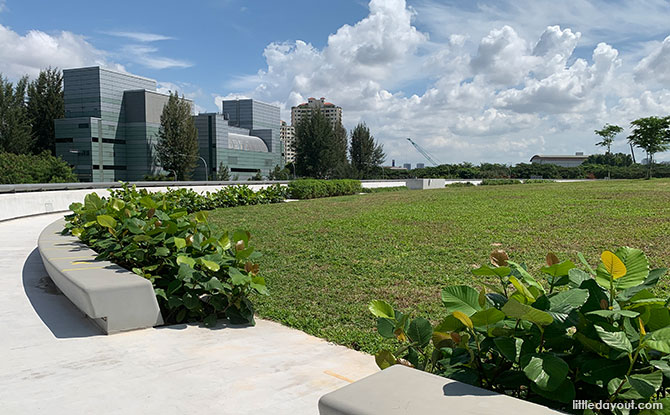 Green Roof at Singapore Desalination Plant