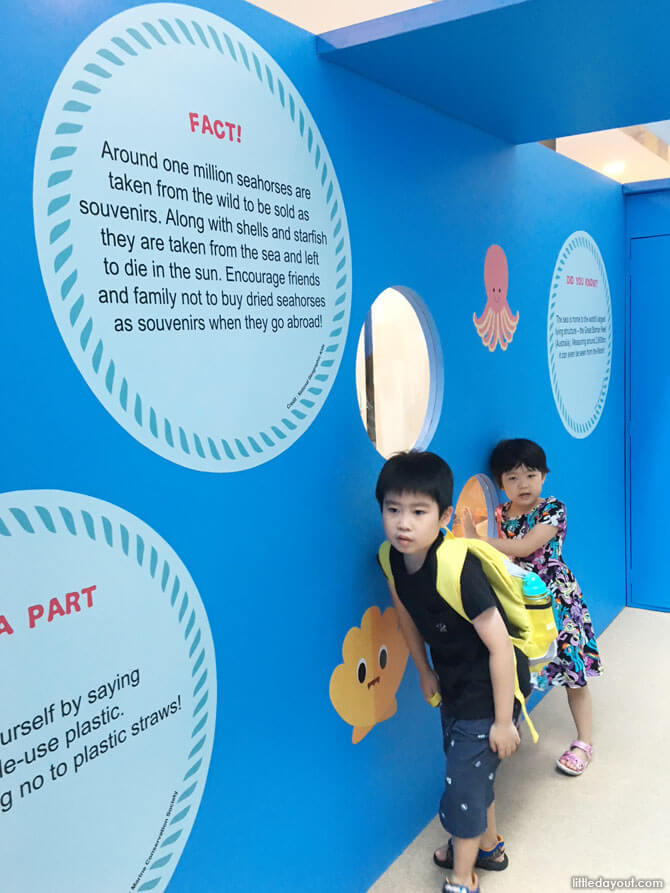 Learning ocean facts at Roll Over the Ocean, Roll Over the Sea