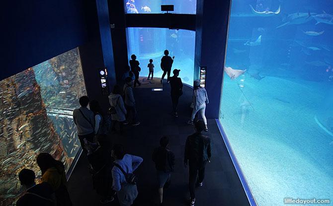 Aquarium route