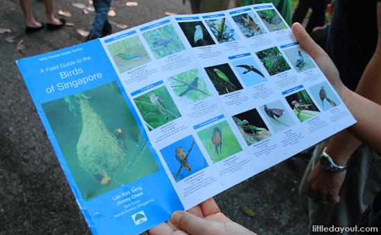 NSS Field Guide