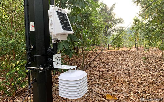 Hi Tech IOT Sensors at the OCBC Arboretum, Singapore Botanic Gardens Gallop Extension