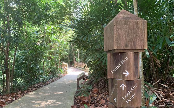Paths at Hindhede Nature Park