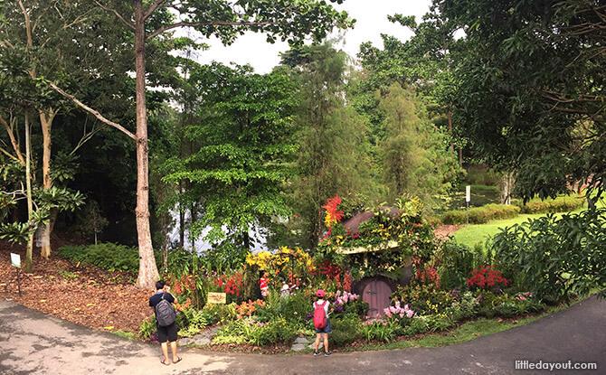 Lookout Point to Eco-Garden at Singapore Botanic Gardens