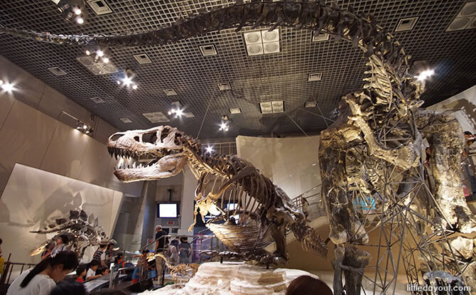 Dinosaurs, National Museum of Nature and Science, Tokyo, Japan