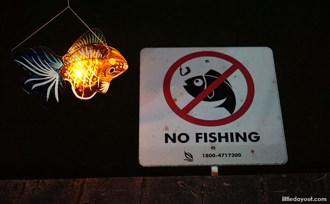 Fishing is not allowed but fish lanterns are okay.