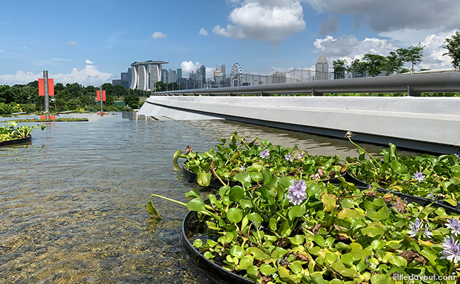Stormwater management features