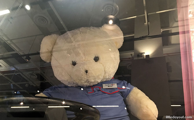Teddy bear driver named Marcus