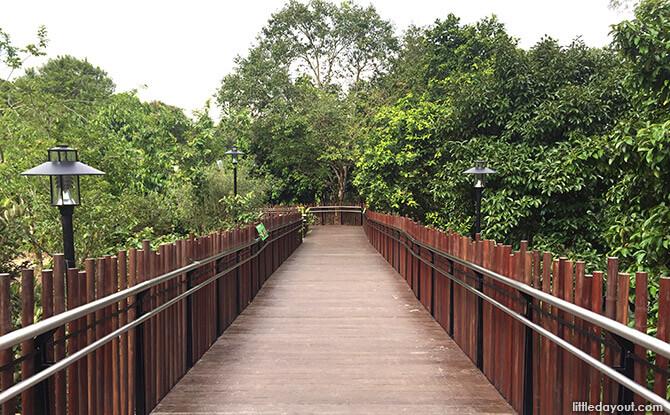 Bridge over the Orchard Zone at Jacob Ballas Children's Garden New Extension