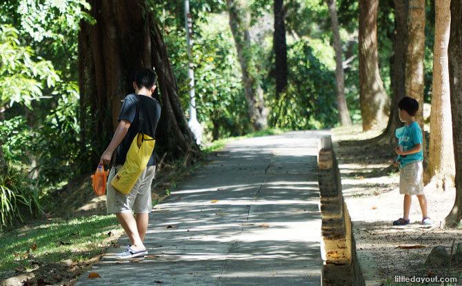 Explore a nature trail