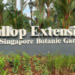 Singapore Botanic Gardens Gallop Extension: Mingxin Foundation Rambler's Ridge And OCBC Arboretum Opens
