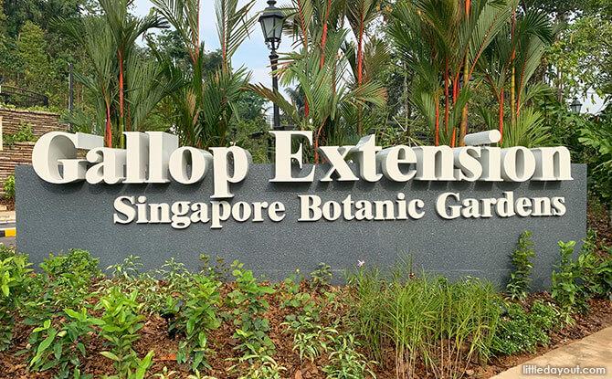 14-gallop-extension-singapore-botanic-gardens