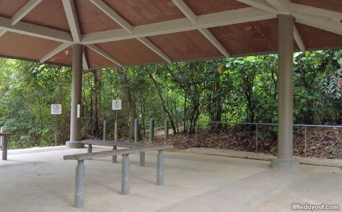 Things To Know About the Mandai T15 Trail